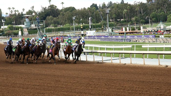 Where Can You Find up-to-Date Information About Entries at the Santa Anita Race Park?