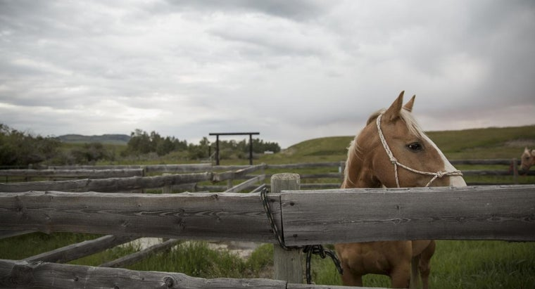 What Companies Offer Quotes on Farm and Ranch Insurance?