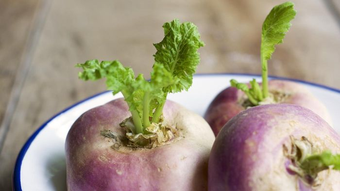 What Are Some Good Mashed Turnip Recipes?