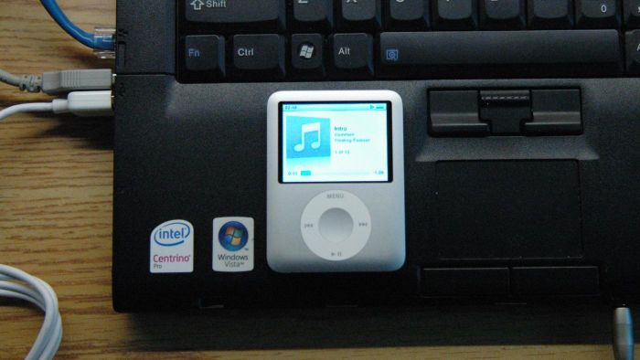 What Steps Must Be Taken to Get an Apple IPod Password Reset?