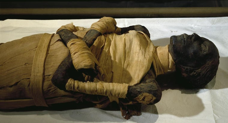 What Are Some Facts About Mummies?