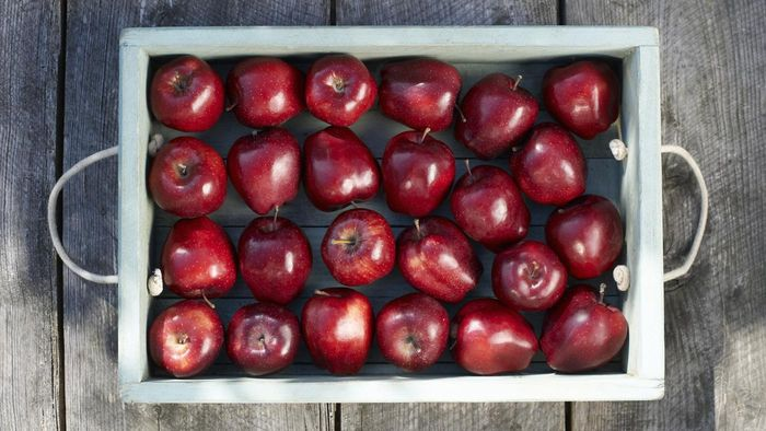 Where Can You Find Nutrition Facts for Apples?