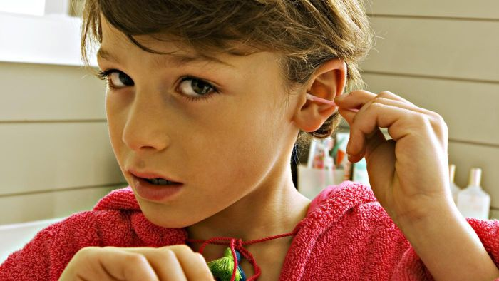 Where Can You View Pictures of the Human Ear?