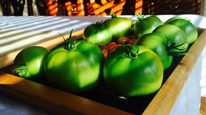What Are Some Good Green Tomato Recipes?
