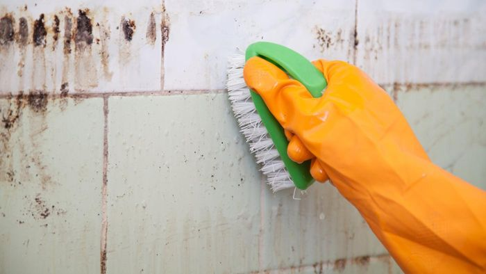 How do you use bleach solution to kill mold?