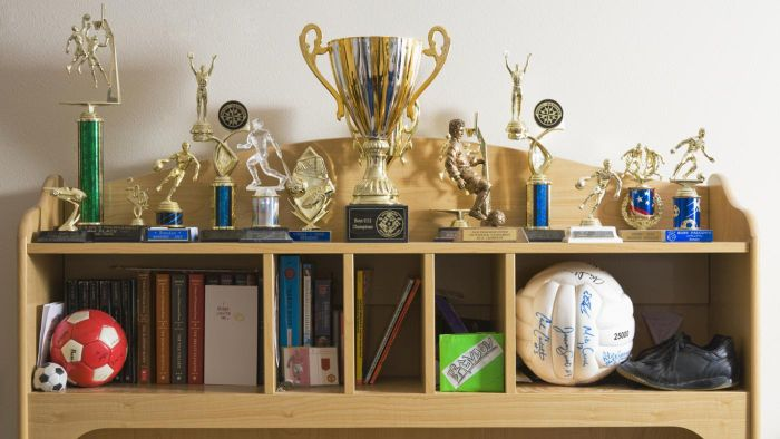 What Are the Different Parts of a Trophy?