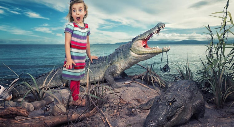 What Are Some Fun Facts About Aligators for Kids?