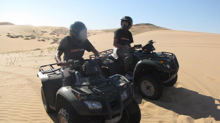 What Are Popular Brands of ATV Four-Wheelers?