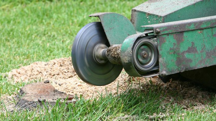 Where Can One Purchase a Used Stump Grinder?
